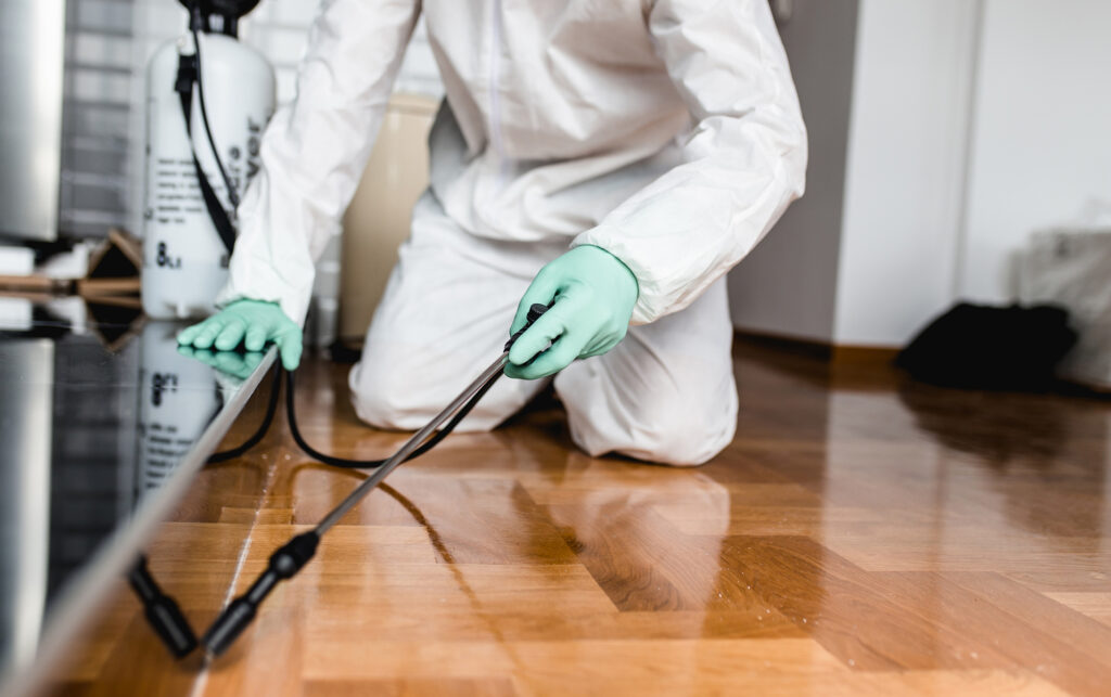 Is Regular Cleaning Enough to Keep Pests Away from My Home?